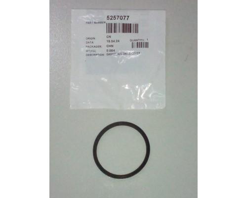 Кольцо уплотнительное термостата ISF2.8, ISBe